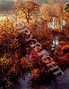 Trees in Autumn at Barton Creek